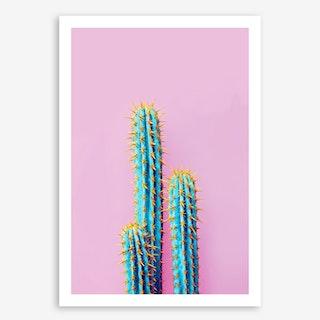 Fluro Cactus In Art Print
