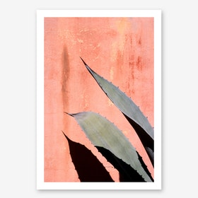 Peach Cactus In Art Print