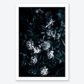 Florals Afterdark Art Print
