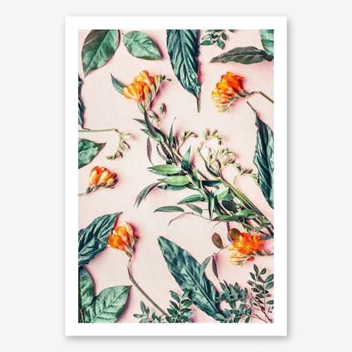 Harvest Print