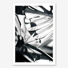 Mono Leaves Art Print