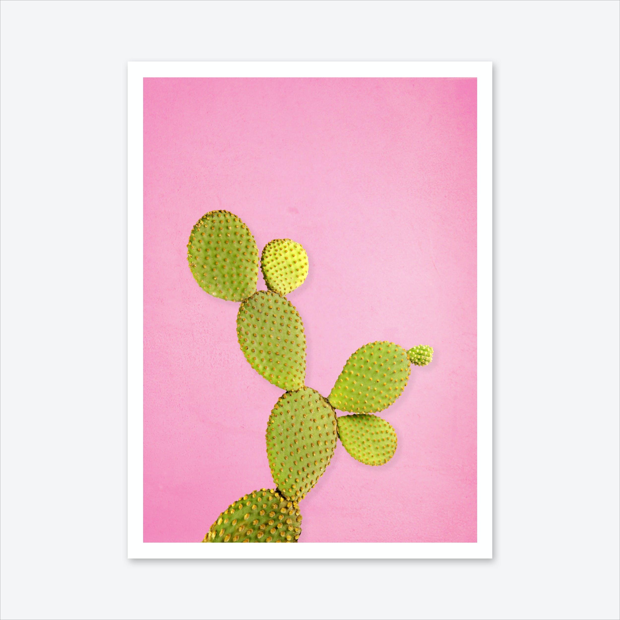Cactus #2 Art Print