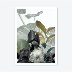 December In Eden Art Print