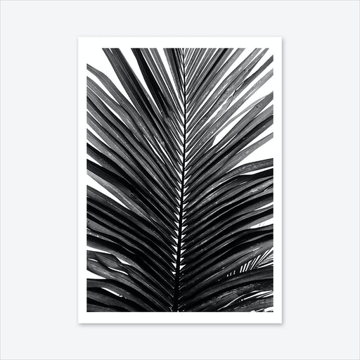Palm Leaf 01 Art Print