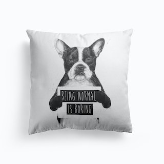 Being Normal Is Boring Cushion