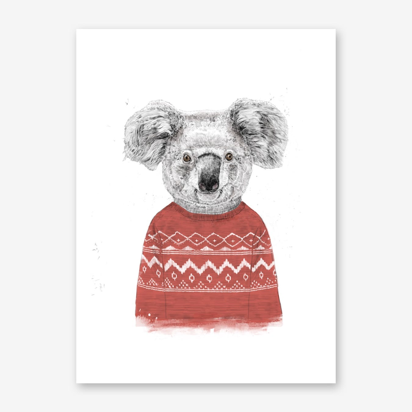 Winter Koala II