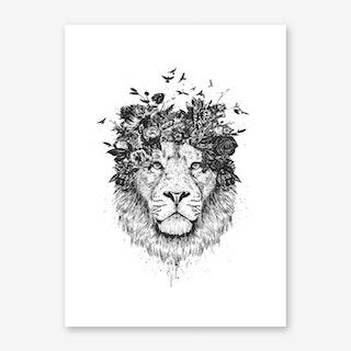 Floral Lion II Art Print