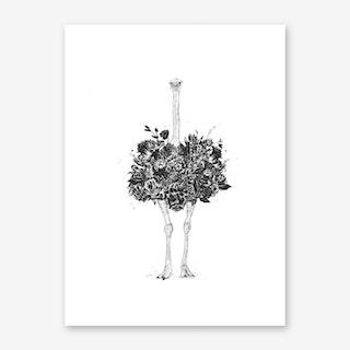 Floral Ostrich Art Print