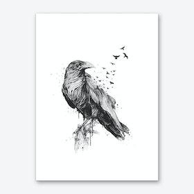 Born to be free (bw) Art Print
