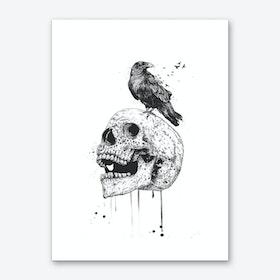 New skull (bw) Art Print