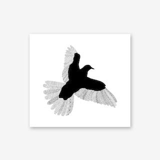 Bird On White Art Print
