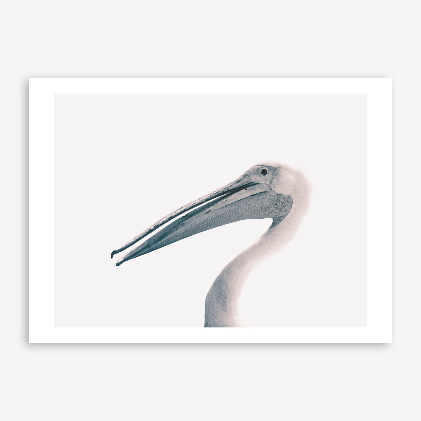 Toned Photograph Of A Pelican Art Print