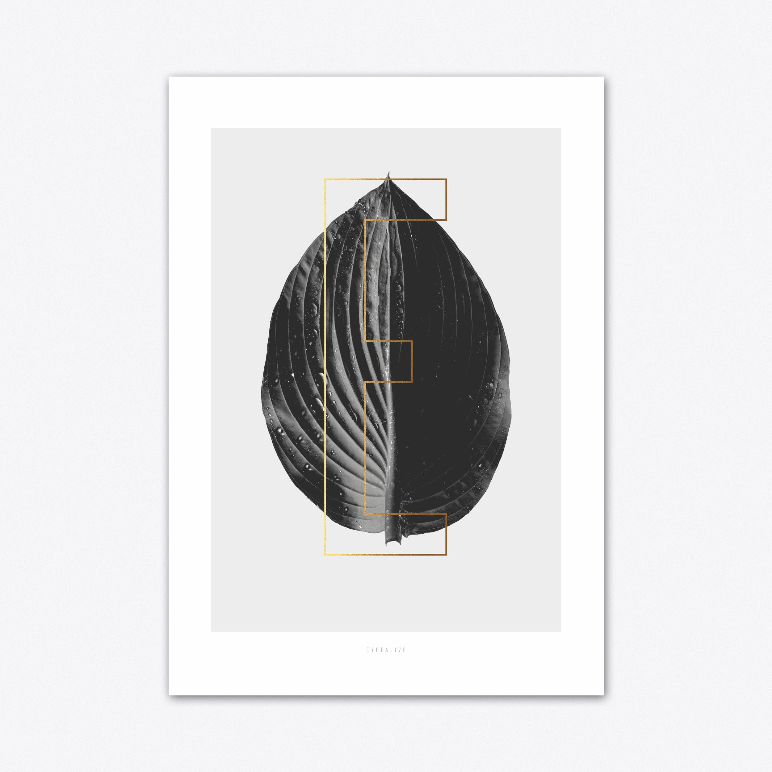 ABC Plants E Art Print