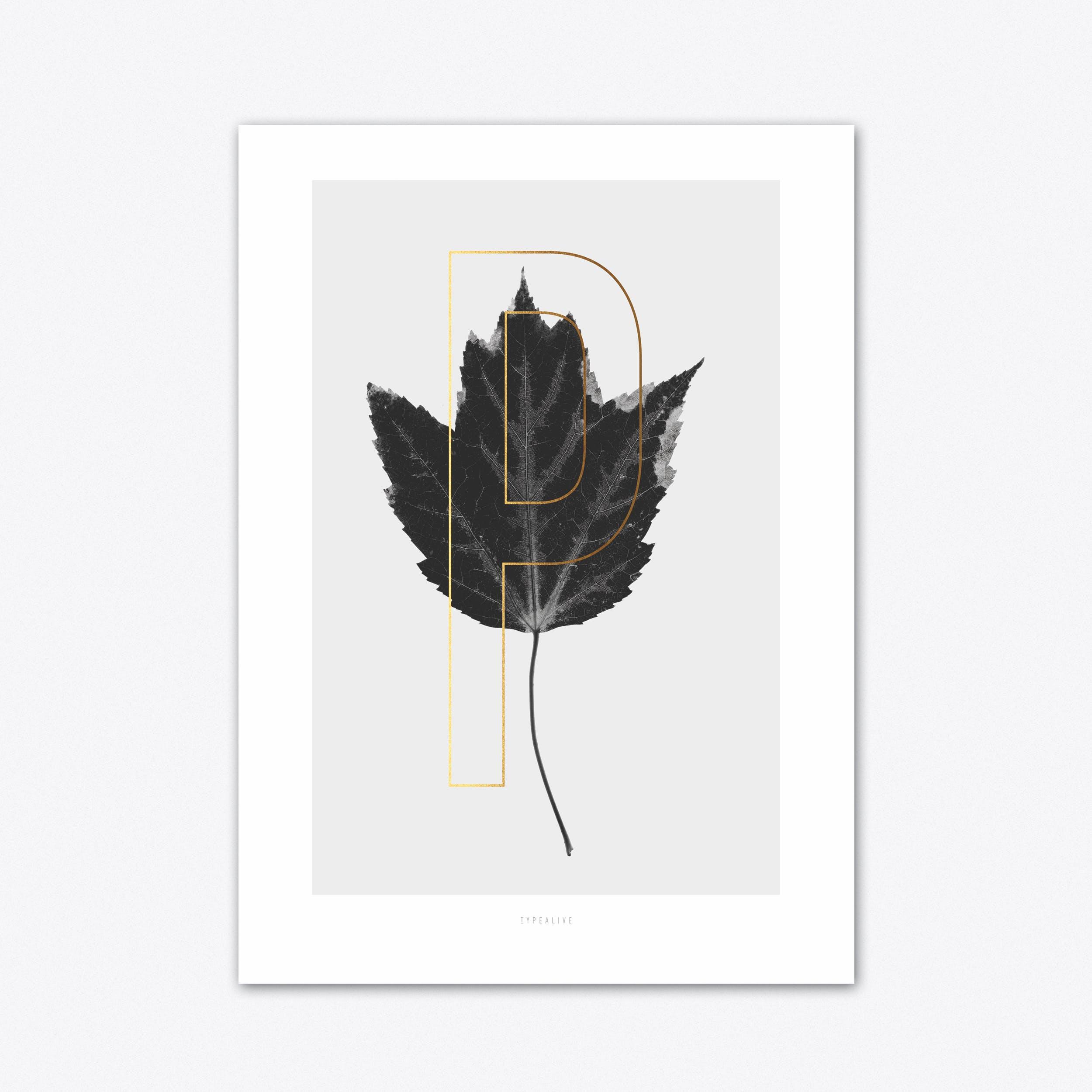 ABC Plants P Art Print