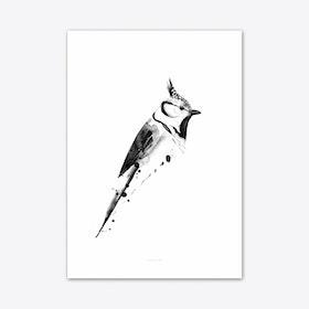 Birdy 2 Art Print