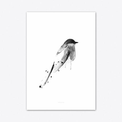 Birdy 3 Art Print