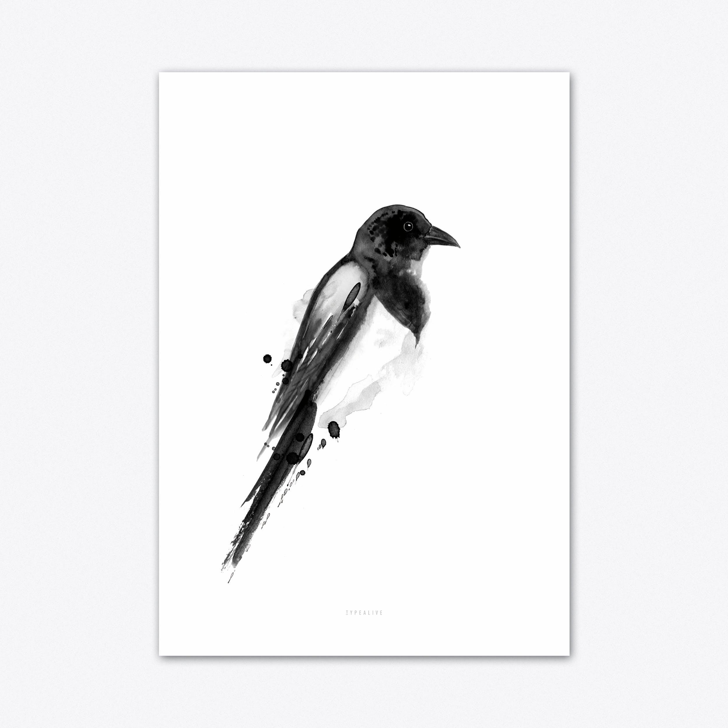Birdy 4 Art Print