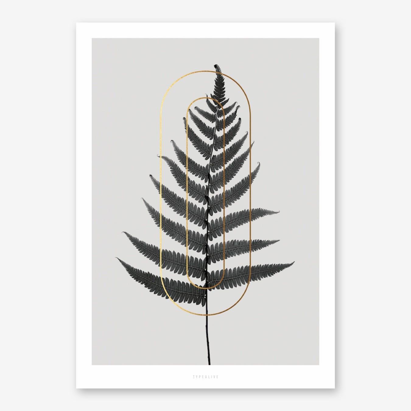 ABC Plants O Print