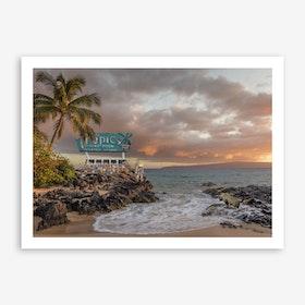 Tropical Compression Art Print