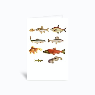 Fishing Line Greetings Card