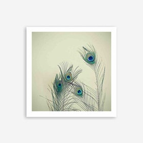 All Eyes Are On You Art Print
