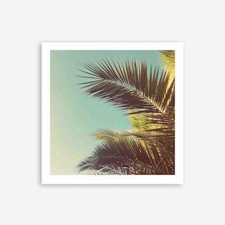 Autumn Palms Art Print