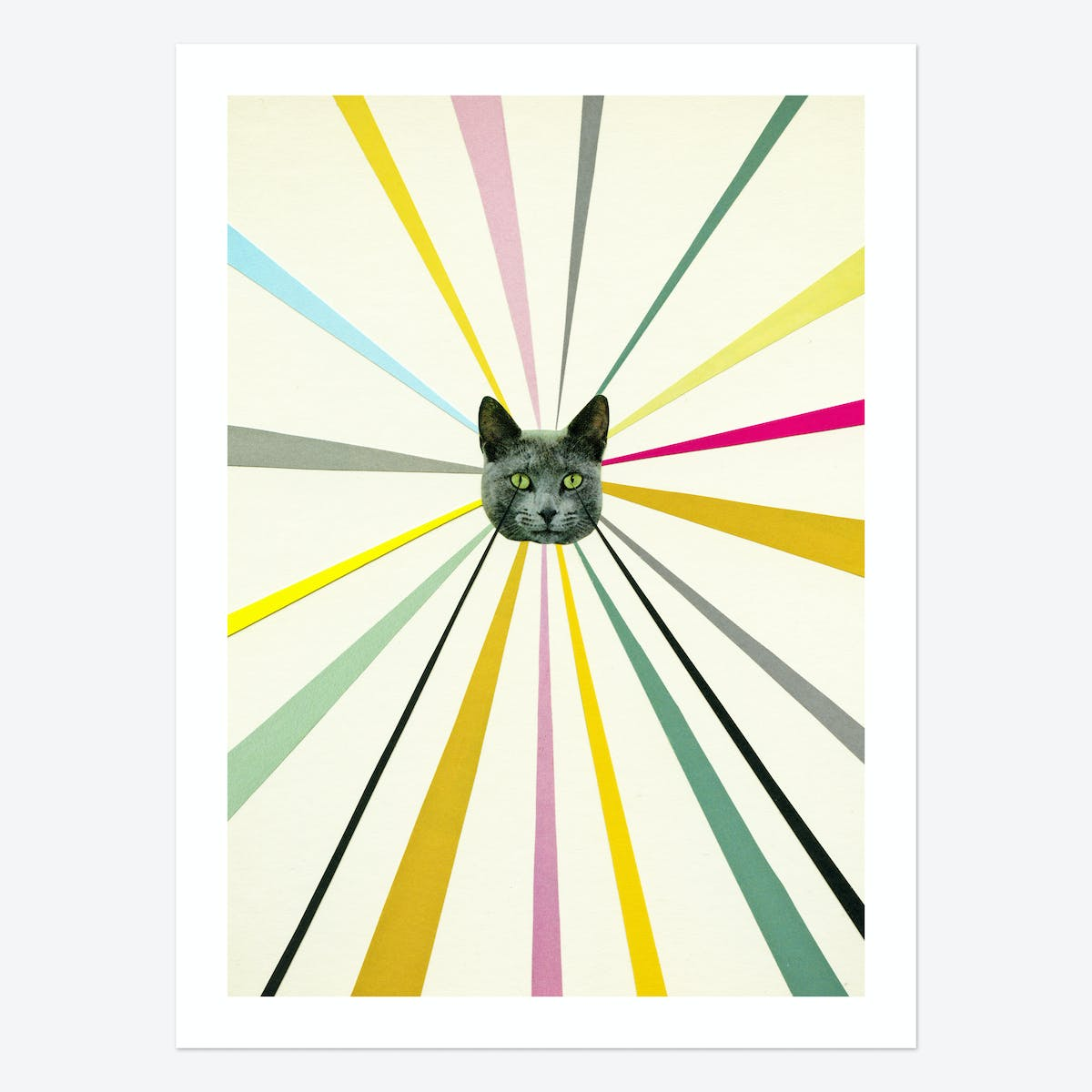 Cat's Eyes Art Print