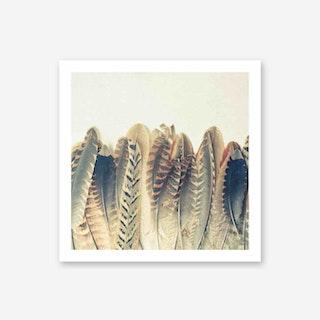 Feather Dip Art Print