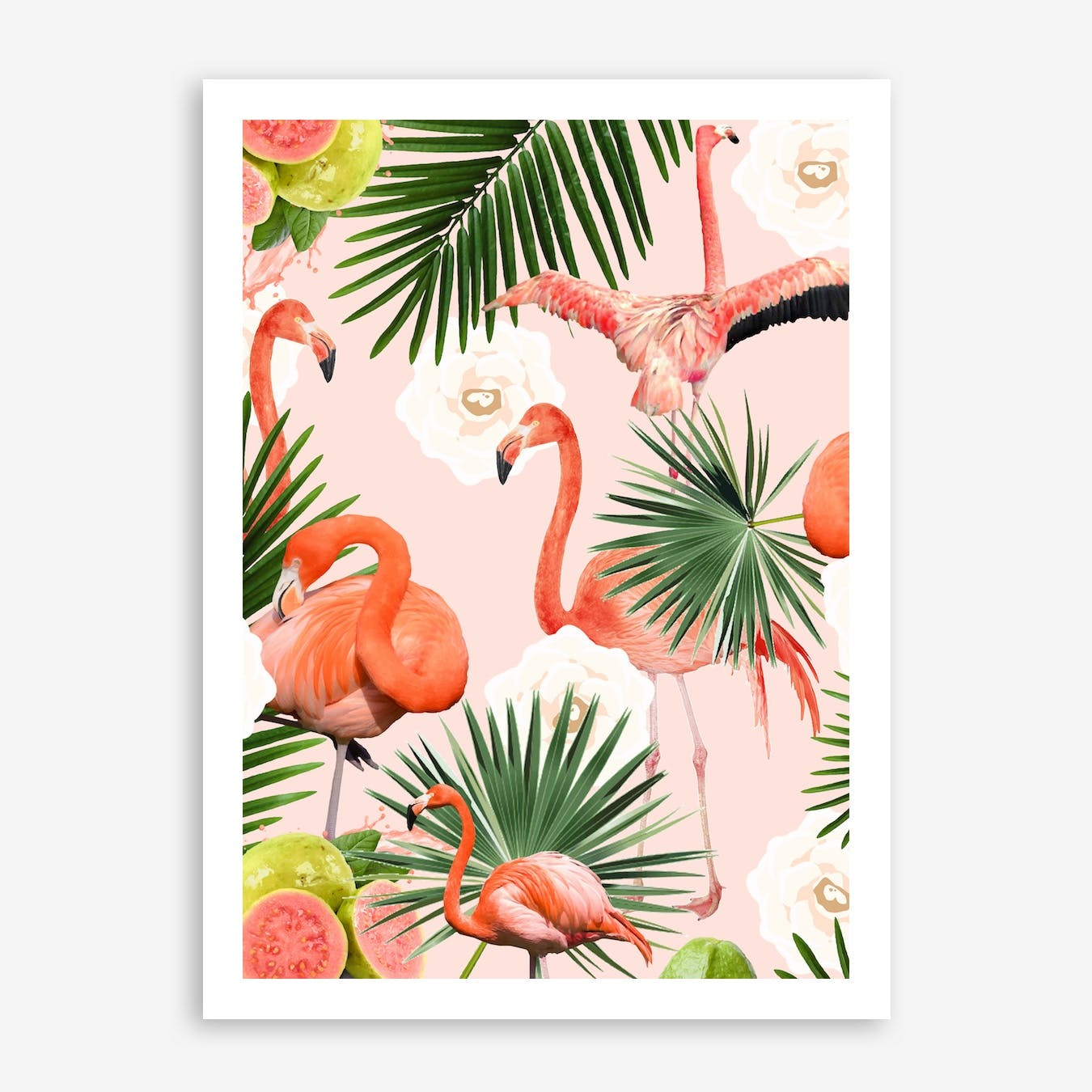 Flamingo Guava In Print