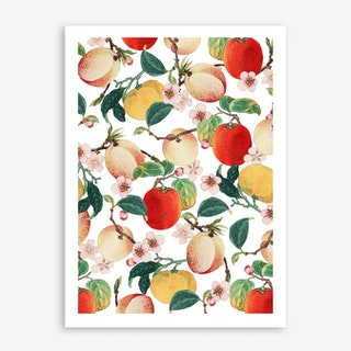 Fruity Summer In Art Print
