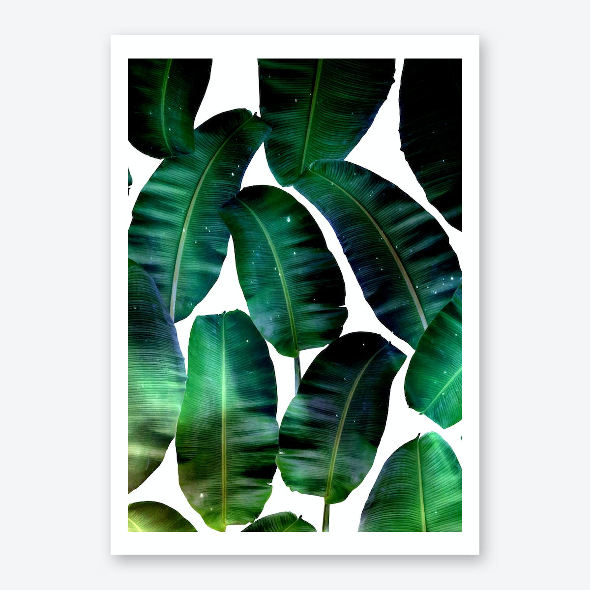 Cosmic Banana Leaves Art Print