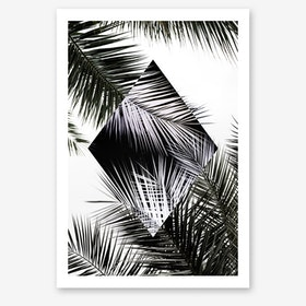 Palm Leaves 3 Geometry 2 Art Print