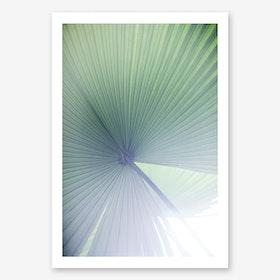 Palm Leaves 4 Art Print