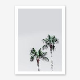 Palm Trees 6 Art Print
