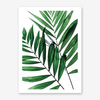 Leaves 5 Art Print