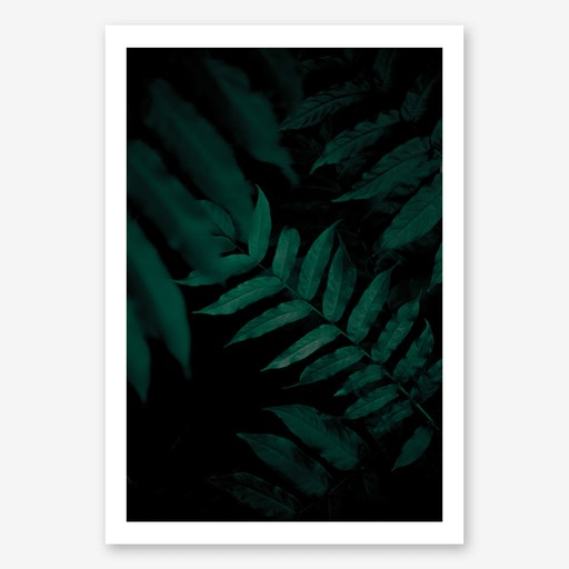 Dark Leaves 2 Art Print