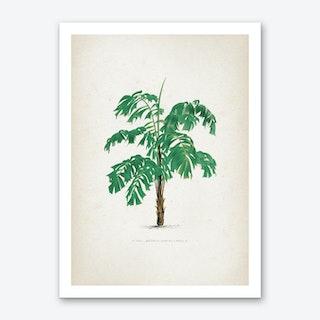 Vintage Kerchove 4 Les Palmiers 39 Art Print