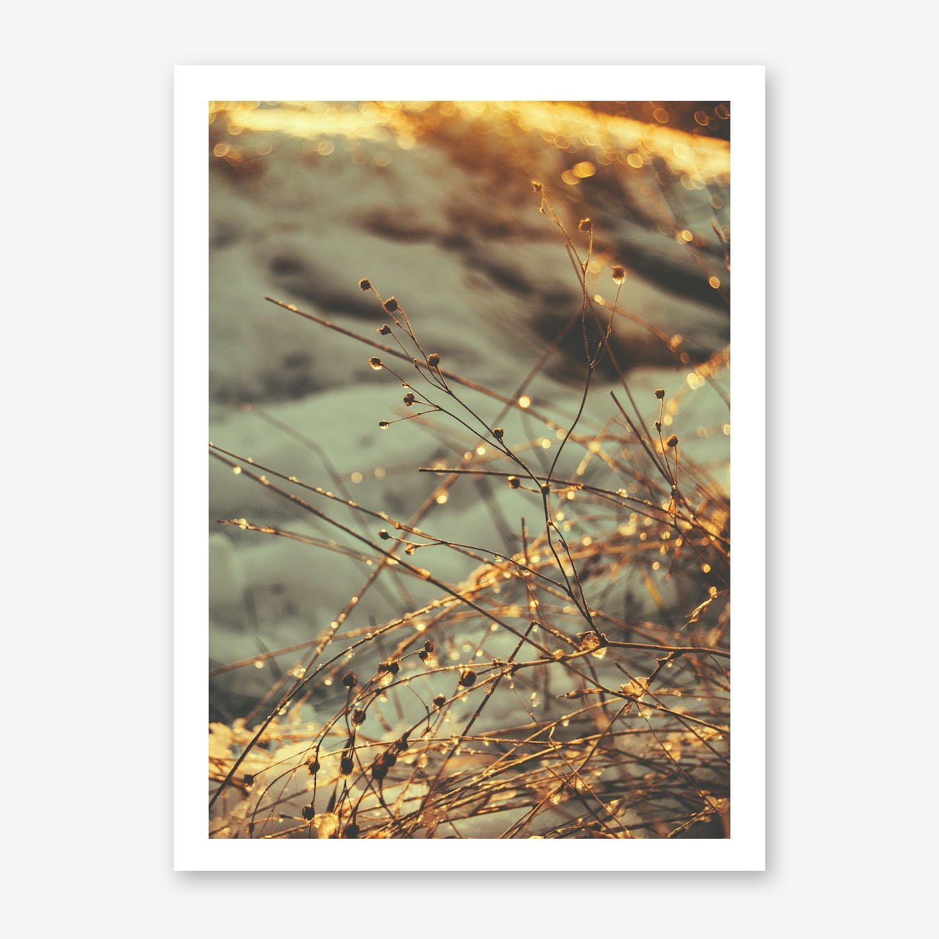 The Droplets Print