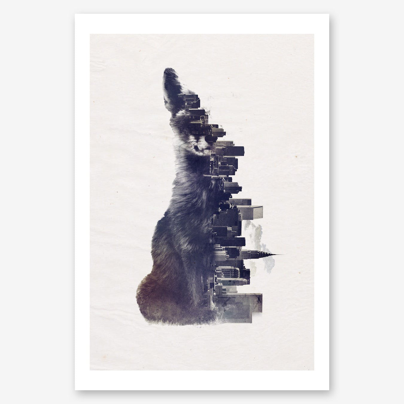 Fox From The City Print