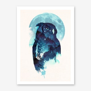 Midnight Owl Art Print