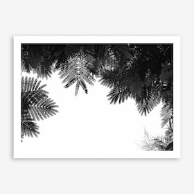 The Tree Top Print