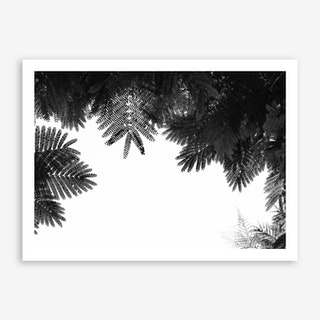 The Tree Top Art Print