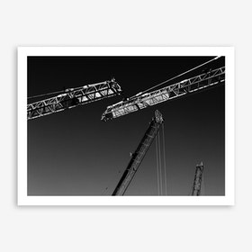 Cranes Print
