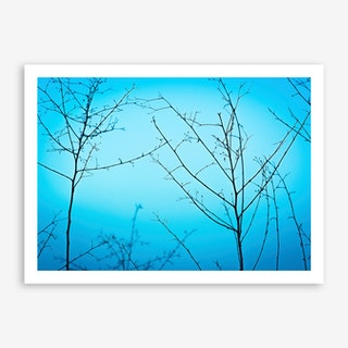 Twilight In The Outdoors Art Print