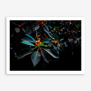 Orange, Green And Dark Art Print