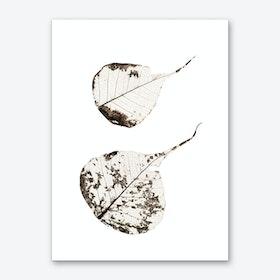 Fallen Leaves #2 Art Print