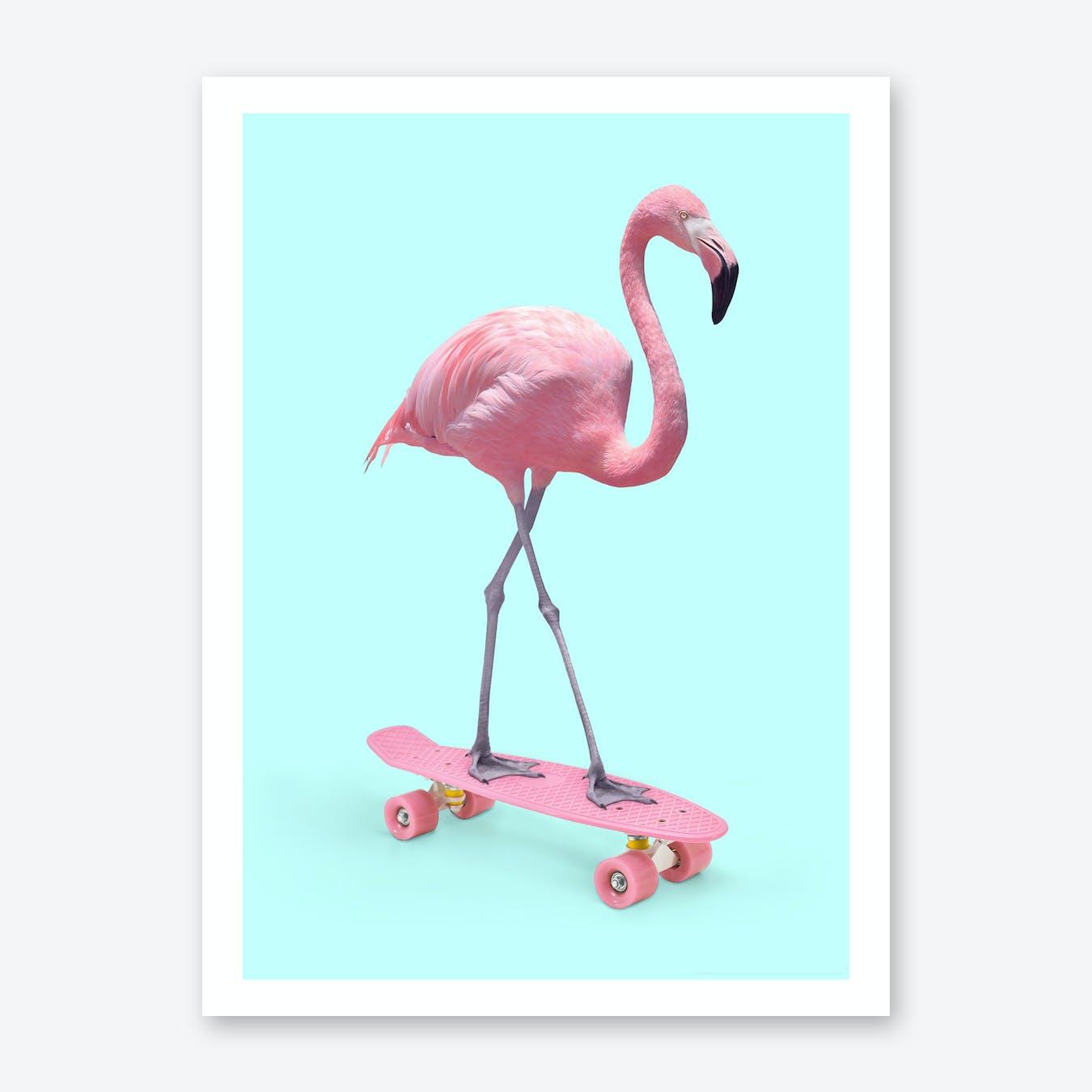 Skate Flamingo Print