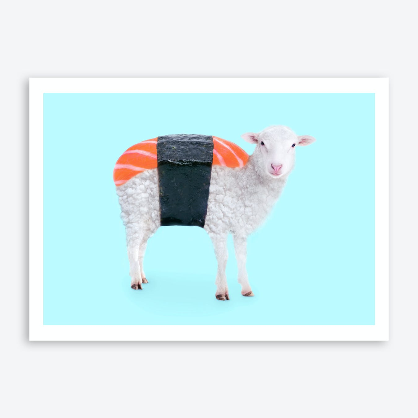 Susheep Print