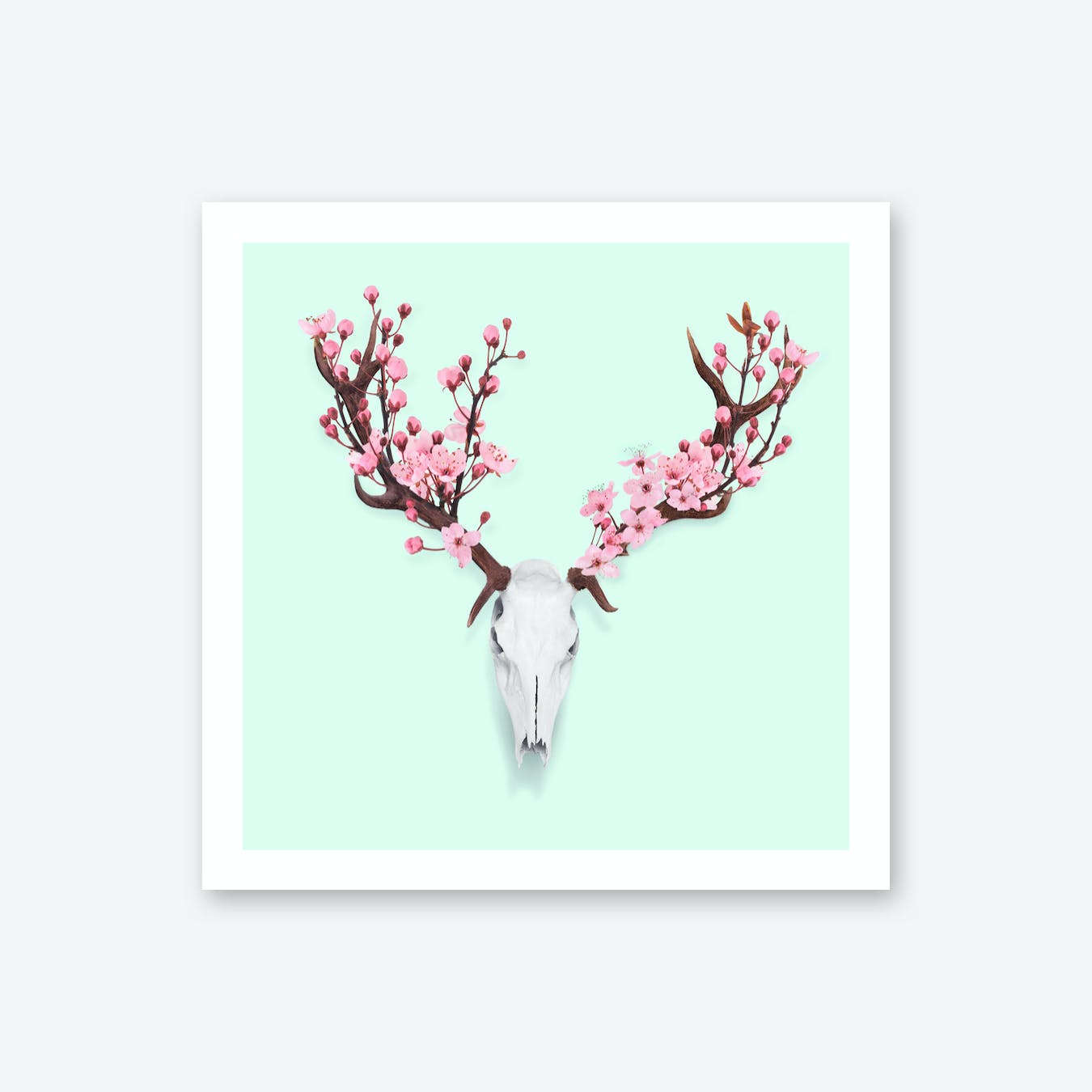 Cherry Blossom Skull Print