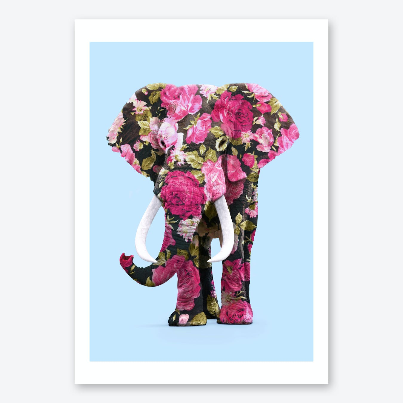 Floral Elphant Print